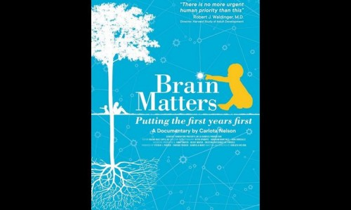 Photo: Artwork for the film, 'Brain Matters.'
