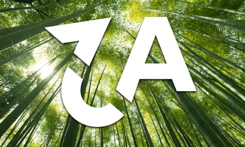 Photo: Chinese bamboo and the Aspirations to Action logo