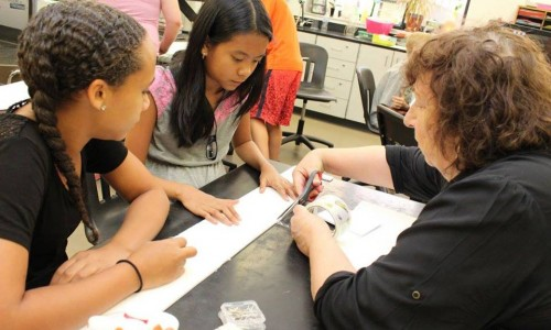 Experiential learning solidifies classroom connections