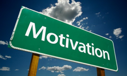 What motivates nonprofits to use a facilitator?