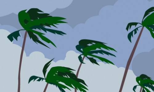 Photo: Illustration of dark clouds and palm trees blowing in the wind