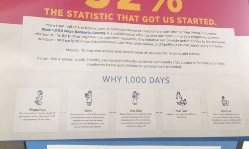 Photo: Poster of First 1,000 Days  featured at the ZERO TO THREE  conference.